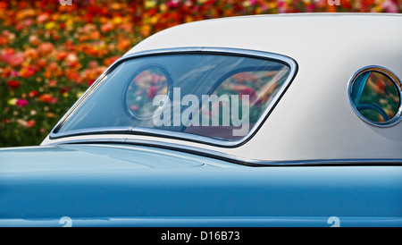An elegant car is surrounded by bright, colorful flowers. - Stock Image