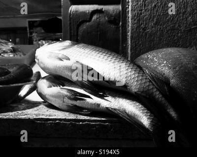 Fishmongers (bnw) - Stock Image