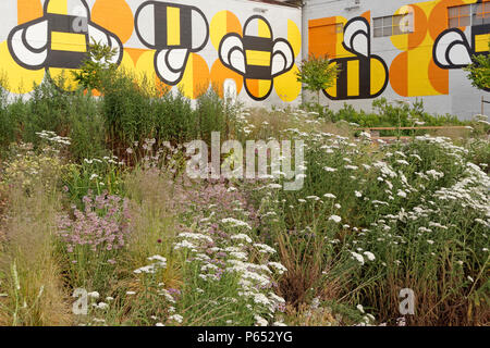 Fifth and Pine pop-up park and pollinator project bee habitat wildflower meadow, Vancouver, BC, Canada - Stock Image