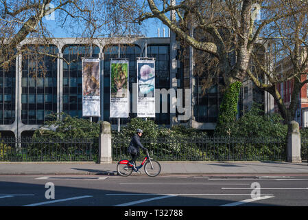 Man on bicycle in Cromwell Road, passing the modern wing of the Natural History Museum, London, England, UK. - Stock Image