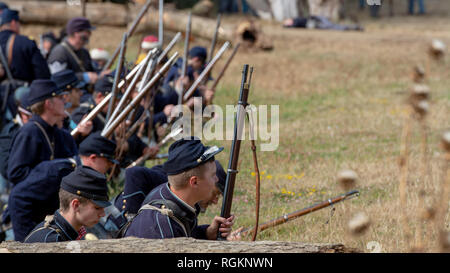 Duncan Mills, CA - July 14, 2018: Union army firing at the Northern California's Civil war reenactment. This Civil War Days is one of the largest reen - Stock Image