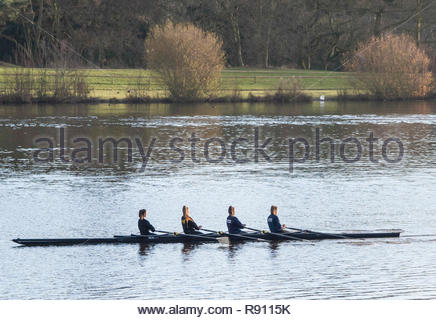 Four female rowers out in a scull rowing boat on the lake at Trentham Gardens Staffordshire  England UK - Stock Image