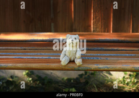 Small old teddy bear sitting on bench in a garden, - Stock Image