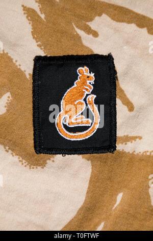 1990 Gulf War 7th Armoured Brigade 'Desert Rats' badge on desert camouflage pattern shirt - Stock Image