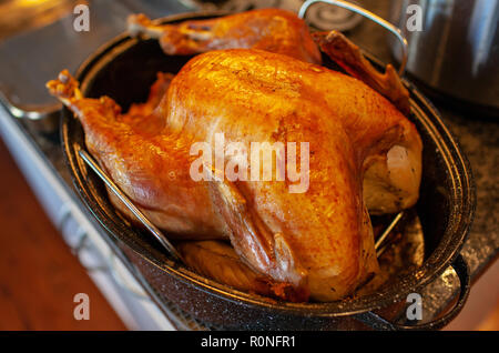 Homemade roasted turkey in a kitchen roasting pan, a North American tradition for Christmas or Thanksgiving meal. - Stock Image