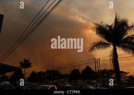 Smoke Cloud, Fire  Burning in the Botanic Garden, blocks the sun, Brasilia, Brazil - Stock Image