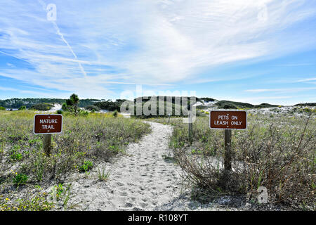 Head of nature trail or walking trail through the white sand dunes of Deer Lake State Park, Florida USA, on the Florida Gulf coast panhandle. - Stock Image