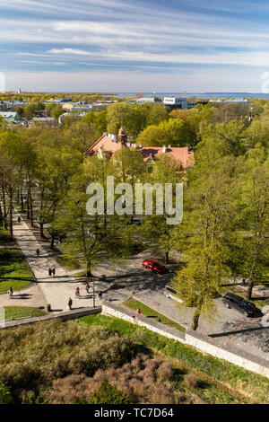 Springtime View of Tallinn Estonia from Patkuli Viewpoint - Stock Image