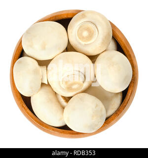 Whole white champignon mushrooms in wooden bowl. Agaricus bisporus, also called common, button, cultivated or table mushroom. - Stock Image