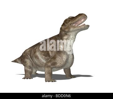 dinosaur Keratocephalus - Stock Image