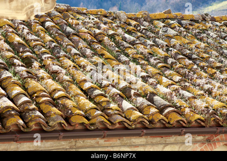 Beautiful antique tiles on a dwelling roof in the Le Marche hilltown of Montefortino in the Sibillini National Park - Stock Image