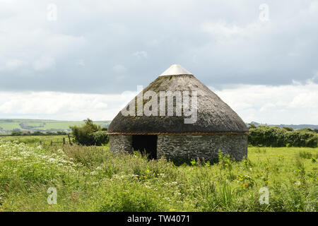 A thatched circular barn known as a Linhay on Braunton Marshes near Barnstaple, Devon UK - Stock Image