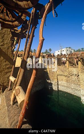 Saudi Arabia, Tabuk, Taima (aka Tayma). The Bi'r al-Haddaj is Saudi Arabai's oldest well - Stock Image