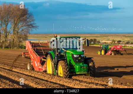 Tractors carrying out deep bed shaping followed by sowing the fields in early springs time at Burnham Overy in North Norfolk, East Anglia, England, UK - Stock Image