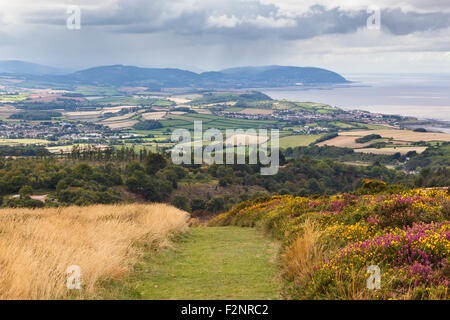 View from Beacon Hill on the Quantocks, looking towards North Hill and Dunkery - Stock Image