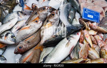 Sanary sur Mer - September 2018: Fresh fish on sale in the market of Sanary sur Mer, France - Stock Image