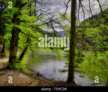 DE - BAVARIA: The tranquil Schlossweiher at Lenggries  (HDR-Image) - Stock Image