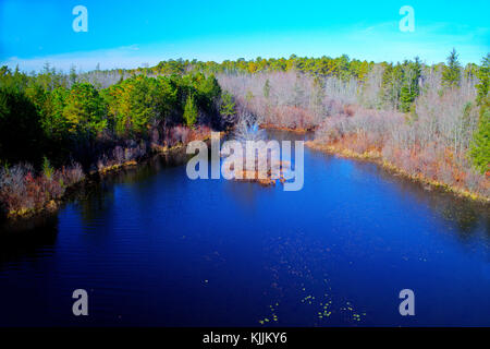 Beautiful Lake Surrounded by Trees - Stock Image