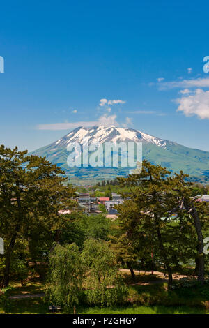 Mount Iwaki on a blue sky day with Hirosaki Park trees in the foreground. In Hirosaki, Aomori Prefecture, Japan. - Stock Image