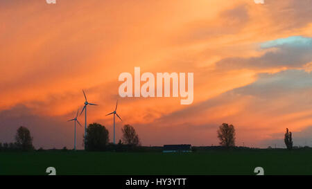 Scenic View Of Field Against Orange Sky - Stock Image