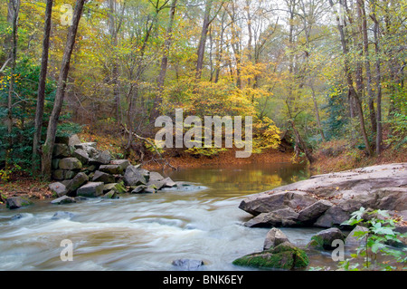 Water stream landscape in the fall colored forest - Stock Image