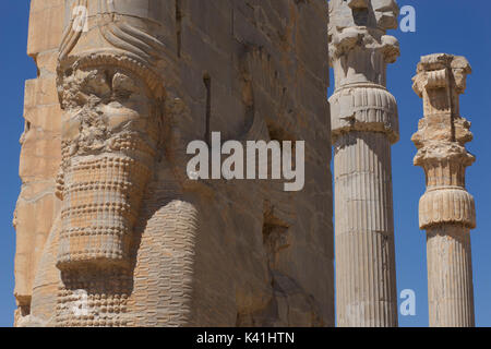 The Gate of All Nations, Persepolis, Iran. lamassus, bulls with the heads of bearded men - Stock Image