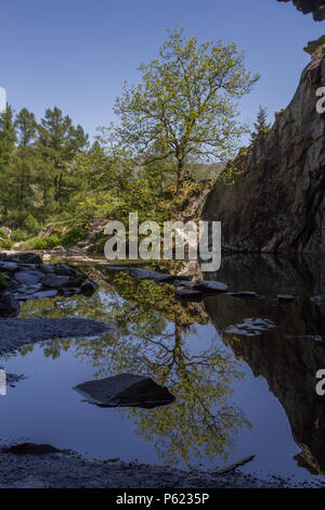 Looking out from Rydal Cave Entrance on a glorious sunny day - Stock Image