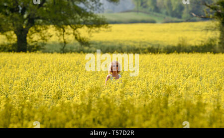 Bolney Sussex, UK. 22nd Apr, 2019. A woman walks through a golden field of oilseed rape as the hot weather continues at Bolney near Haywards Heath just north of Brighton on Easter Monday Credit: Simon Dack/Alamy Live News - Stock Image