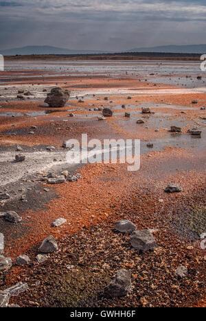 Vertical shot of mineral deposits in patterns on the shores of Lake Magadi, Kenya. Africa. - Stock Image