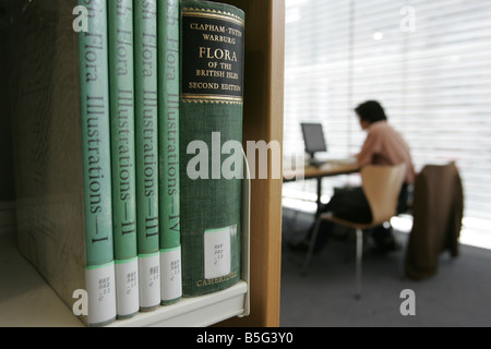 A Student studies in the library at Abertay University in Dundee - Stock Image
