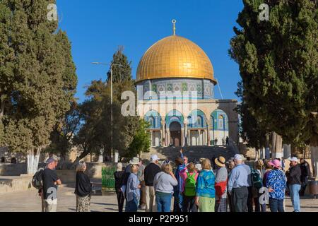 Israel, Jerusalem, the UNESCO World Heritage Old Town, the Muslim Quarter, the Mosque Esplanade, the Dome of the Rock (often called the Omar Mosque), tourist group with a guide - Stock Image