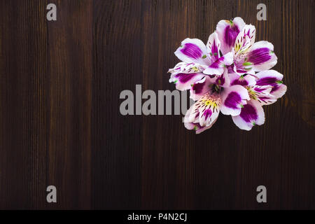 Bouquet of Peruvian Lillies on Dark Wood Table with Space for Copy - Stock Image