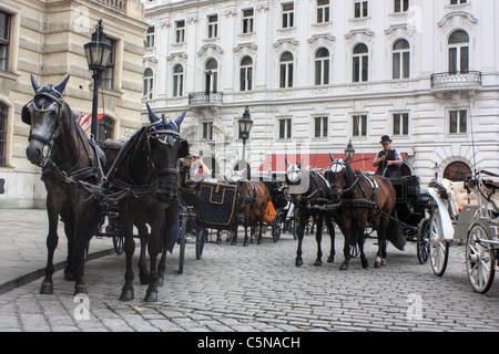Fiaker (horse carriage) in Vienna, Austria - Stock Image