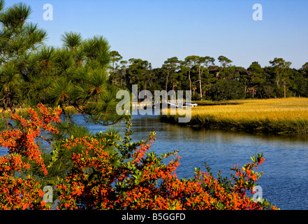wetlands Kiawha Island, South Carolina - Stock Image