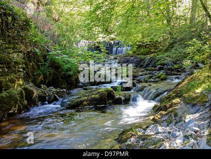Stock Gyhll Lower Falls - Stock Image
