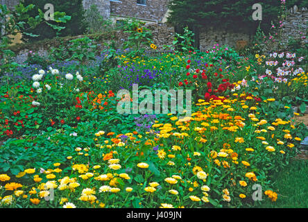 Colourful floral display in a Kitchen Garden - Stock Image