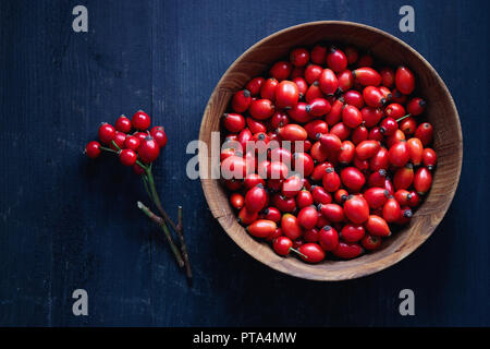 Freshly picked rose hips. Wooden bowl of rose hip or rosehip, commonly known as the dog rose (Rosa canina). - Stock Image