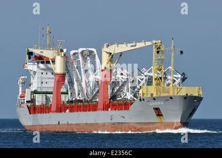 Leandra - Stock Image