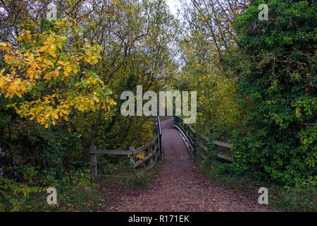 Footpath over bridge autumn in Milton Park Cambridge Cambridgeshire - Stock Image