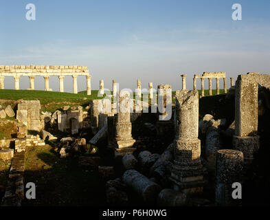 Syria. Apamea or Apameia (Afamia). It was an ancient Greek and Roman city. Ruins of the Temple of Zeus Belos with Great colonnade in the background. Photo taken before Syrian Civil War. - Stock Image