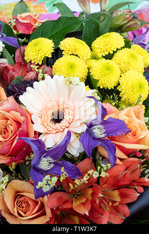 Close up of bouquet of several colorful flowers. - Stock Image