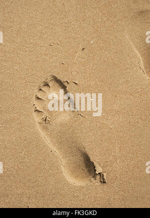 Single bare footprint in wet sand. - Stock Image