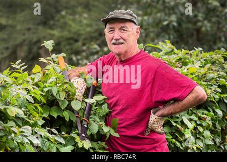 Alan Mousley, Plot 3, Eglinton Growers allotments, Kilwinning, Ayrshire, Scotland - Stock Image