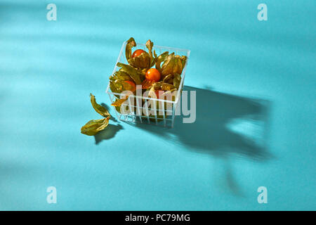 physalis - Stock Image