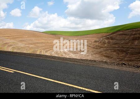 Wheat Field and Road, Palouse, Washington - Stock Image