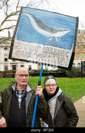 London, UK. 26th January 2019. London protest against the intended resumption of whaling by Japan.The Japanese government recently backed out of an international agreement banning commercial whaling. Campaigners rally at Cavendish Square for the march to the Japanese Embassy. Older couple holding Stop Killing our Whales placard. Credit: Stephen Bell/Alamy Live News. - Stock Image