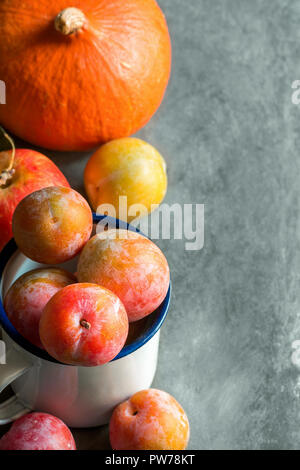 Colorful multicolored freshly picked plums Mirabelles red yellow green in enamel mug. Apples pumpkin on black grey stone background. Thanksgiving autu - Stock Image
