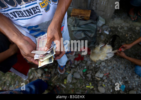 A Filipino counts his earnings outside a cockhouse near Mansalay, Oriental Mindoro, Philippines. - Stock Image