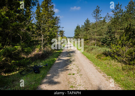 Gravel riding on Danish cycling route. - Stock Image