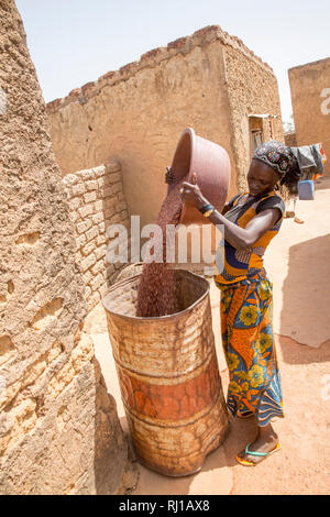 Kourono village,Yako province, Burkina Faso.  Mariam Tougma, 23, pouring sorghum she has just winnowed into an old oil drum to store for safe-keeping in her family compound. - Stock Image